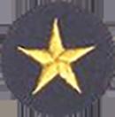 20 Year Service Star