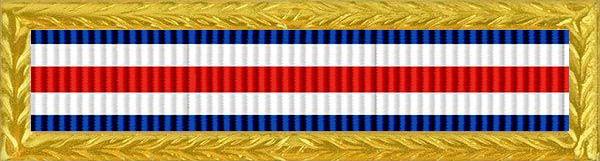 Military Deployment Award Ribbon