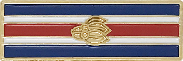 Military Service Award Service & Deployment Enamel Civilian Ribbon