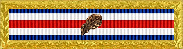 Military Service Award Service & Deployment Ribbon