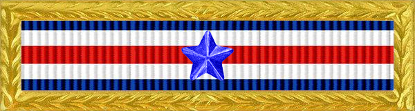 Military Service Award Service Ribbon