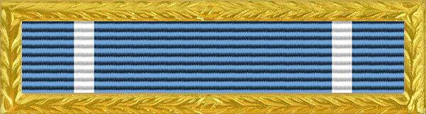 Special Service Award Ribbon
